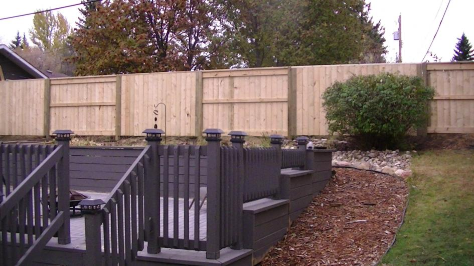 Deck & Fence